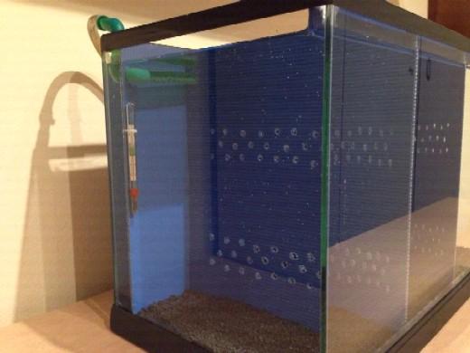 bettiera fai da te - Plexiglass Per Acquario Fai Da Te
